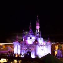 Cinderella's Castle // Canon 5D