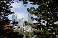 Trees framing The City